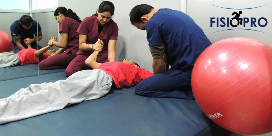 fisioterapia profesional