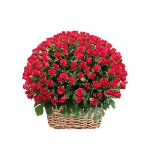 Arreglo de 200 rosas rojas
