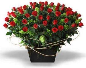 Arreglo de 100 rosas rojas