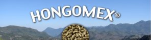 Hongomex. Hongos medicinales