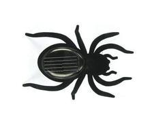 Araña Solar