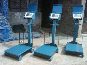 Balanza electronica de 300 kg.
